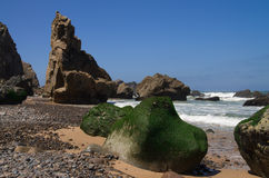 Sea moss rocks at beach. Cabo da Roca. Rocks covered of green sea moss at Malhada do Cedouro deserted beach near Cabo da Roca. Sintra, Portugal Stock Images