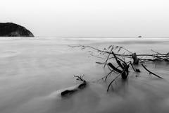 Sea mountain black and white Royalty Free Stock Photo