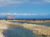 The sea, mountain and gull Stock Photography