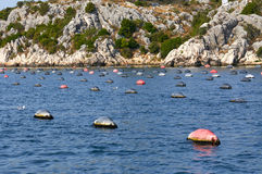 Sea mussel farm. Near the mountain Royalty Free Stock Photography