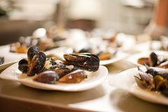 Sea mussels Royalty Free Stock Images