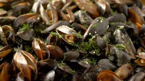 Sliding over sea mussels cooked with herbs stock video