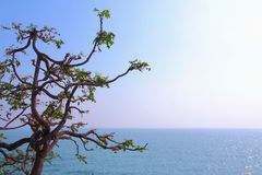 Sea. Naturally beautiful sea in Thailand Royalty Free Stock Photography