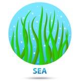 Sea nature icon Royalty Free Stock Photos