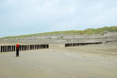 Beach and dunes netherlands Stock Images