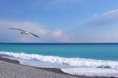 The sea, Nice, France Stock Image