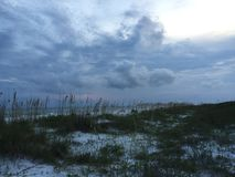 Sea oats. & clouds Florida Gulf Royalty Free Stock Images