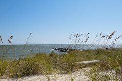 A view of Mobile Bay at Dauphin Island Alabama. Sea oats are waving in the breeze and waves are slowing rushing the shoreline at a rock lined jetty in Mobile Bay Stock Photos
