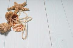 Sea objects - shells, sea star, pearls. Royalty Free Stock Photos