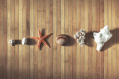 Sea objects on wood background. Royalty Free Stock Photo