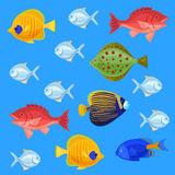 Sea and ocean fish colorful bright set. Tropical fhishes for any kind of design Stock Photos