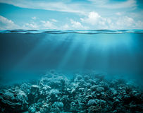 Sea or ocean underwater deep nature background. Sea or ocean underwater deep with reef nature background Royalty Free Stock Photos