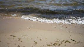 Sea or ocean water shore. Sandy beach. Royalty Free Stock Photo