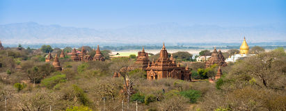 Sea of Pagodas and Temples in Bagan Royalty Free Stock Photo