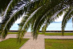 Sea through the palm leaves Royalty Free Stock Images