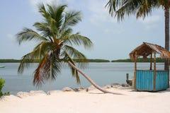 Sea, palms and hut Royalty Free Stock Photo