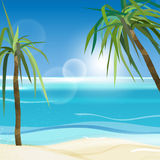 01 Sea palms. The illustration of beautiful seashore background with Palm trees. Vector image Stock Photo