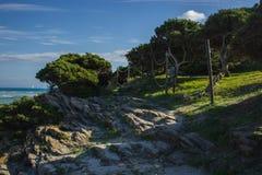 Sea paradise. Beuatifully looking beach La pelosa in sardegna royalty free stock image