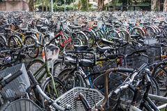 A sea of parked bicycles Stock Photography