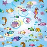 Sea pattern, octopus, summer, underwater world. Pattern with sea inhabitants, underwater world Stock Image