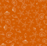 Sea pattern texture from cockleshells Royalty Free Stock Image