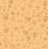 Sea pattern texture from cockleshells Royalty Free Stock Photography