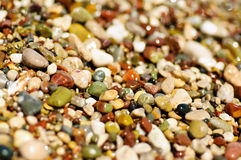 Sea pebble Royalty Free Stock Images