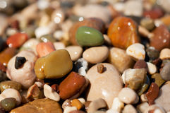 Sea pebble Royalty Free Stock Photography