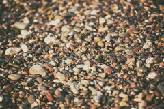 Sea pebble background. Sea pebble colorful wet background, vintage hipster image royalty free stock photo