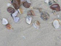 Sea pebble. royalty free stock image