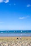 Sea pebble beach in Bretagne, France Royalty Free Stock Image