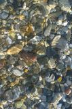 Sea pebble beach with multicoloured stones, waves with foam. Sea pebble beach with multicoloured stones, transparent waves with foam, on a warm summer day stock photography