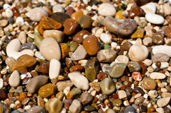 Sea pebble Stock Images