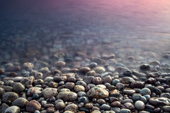Sea pebble. Nature composition of sunset. Royalty Free Stock Image
