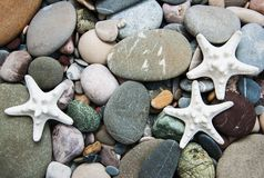 Sea pebble stones and starfish. As a natural background Stock Image
