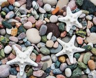 Sea pebble stones and starfish. As a natural background Stock Photo
