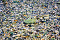 Sea pebbles ath th beach Stock Photography