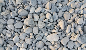 Sea pebbles background Stock Photography