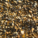 Sea pebbles beach texture. Summer. Stock Photography