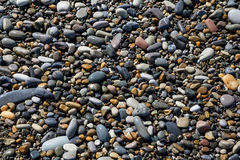 Sea pebbles on the coastline Royalty Free Stock Photography