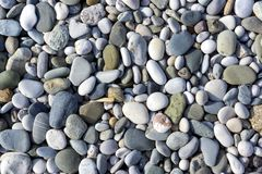 Sea pebbles pattern. Dry Black Sea pebbles pattern background Royalty Free Stock Images