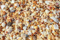 Sea pebbles Royalty Free Stock Photography