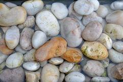 Sea pebbles in the water. Stock Photos