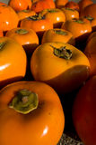 Sea of persimmon fruits Stock Image