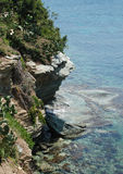 Sea-piece. Precipice sea trees of rock an azure was saved by a south summer Royalty Free Stock Photo