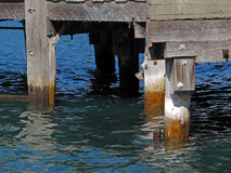 Sea Pier Wood Pylons. Stock Image
