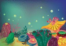 Sea plants. Illustration of sea grass under water vector illustration