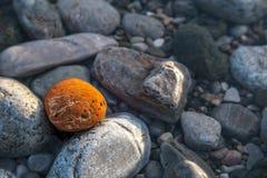 Sea polished rocks closeup Stock Image