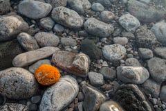 Sea polished rocks closeup Stock Images