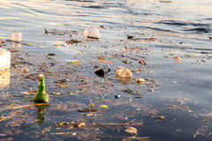 Sea pollution Stock Photography